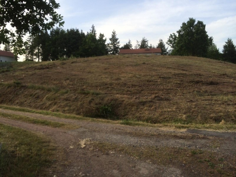 Vente terrain Renaison 52000€ - Photo 1