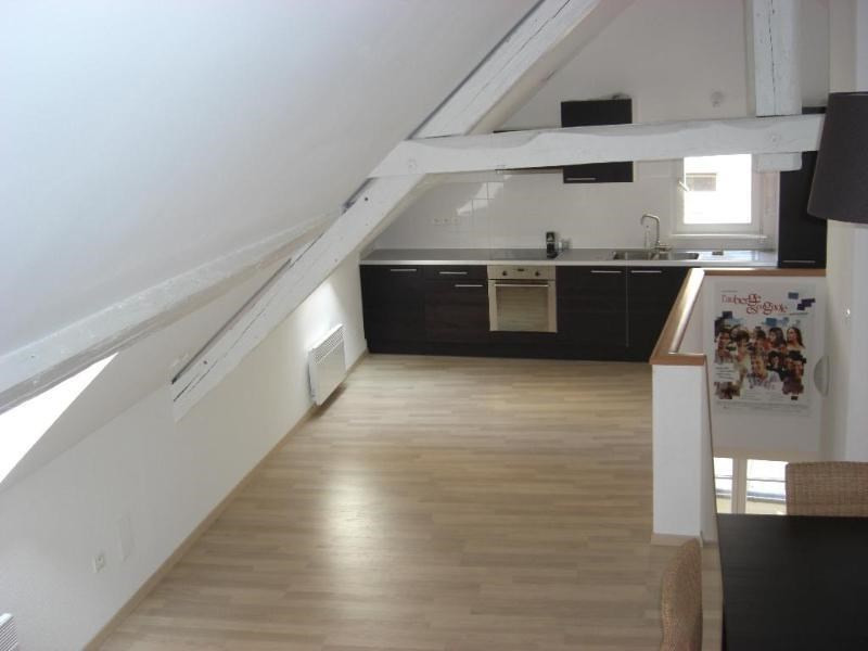 Location vacances appartement Strasbourg 550€ - Photo 9