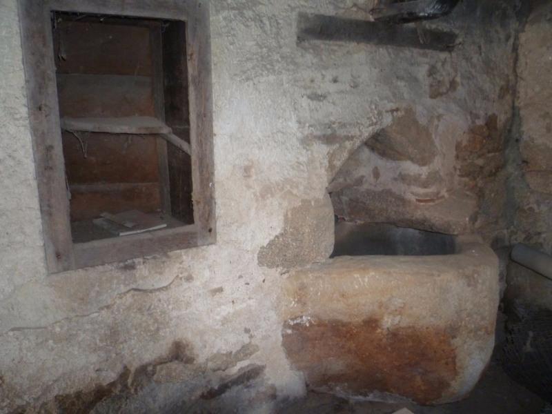 Vente maison / villa St laurent de chamousset 80000€ - Photo 8