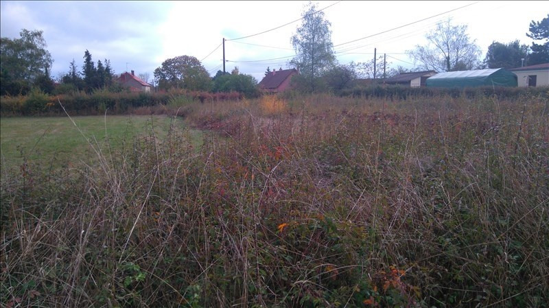 Vente terrain Mornay sur allier 20 500€ - Photo 2