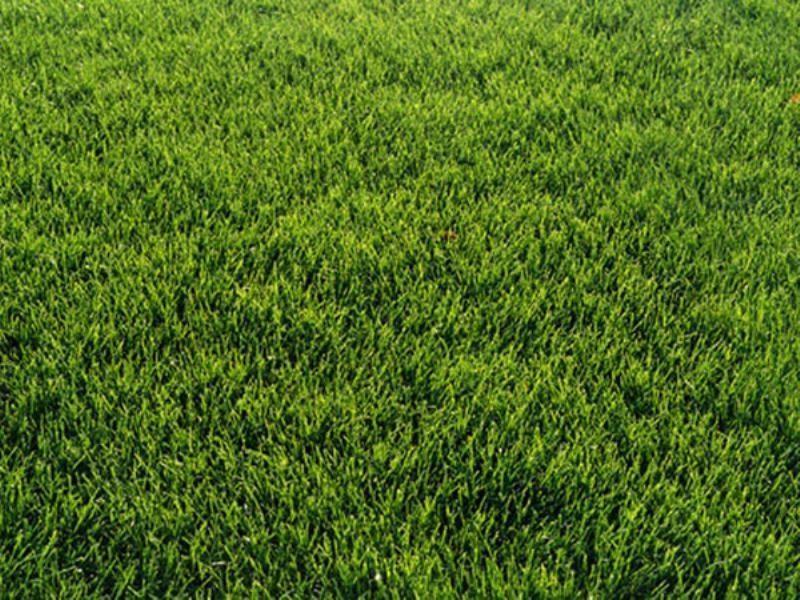 Vente terrain Guemene penfao 28500€ - Photo 1