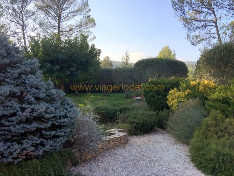 Verkauf auf rentenbasis haus Garéoult 285000€ - Fotografie 3