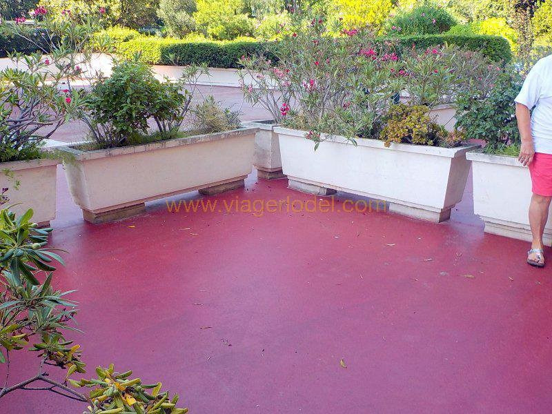 Life annuity apartment Antibes 95000€ - Picture 17