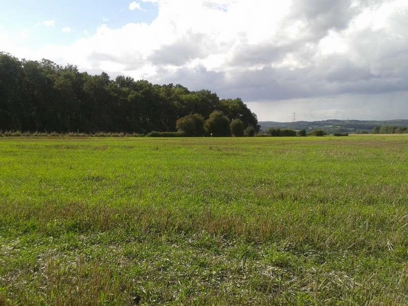 Vente terrain Chevannes 100000€ - Photo 1