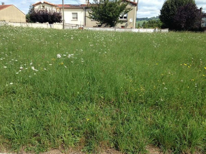 Vente terrain Proche de st amans soult 35000€ - Photo 1