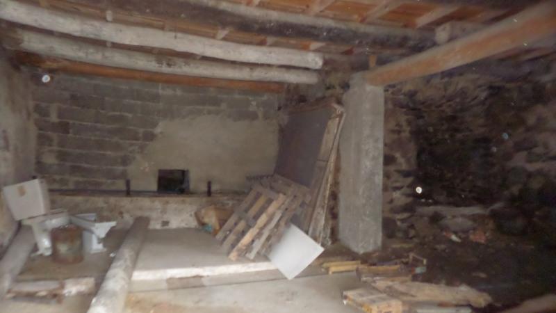 Vente maison / villa Le monastier sur gazeille 55000€ - Photo 16