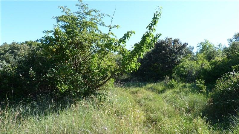Verkoop  stukken grond Vacqueyras 132500€ - Foto 2