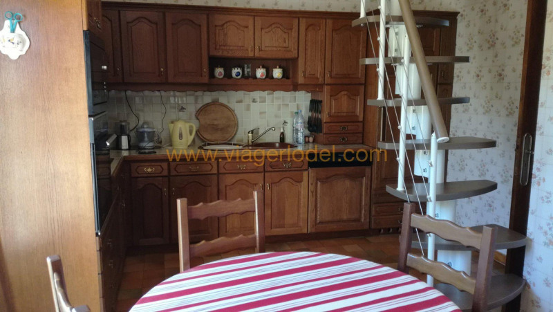 Viager maison / villa Tournefeuille 85 000€ - Photo 8
