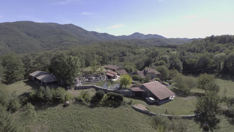 Venta de prestigio  casa Ceret 1349000€ - Fotografía 8