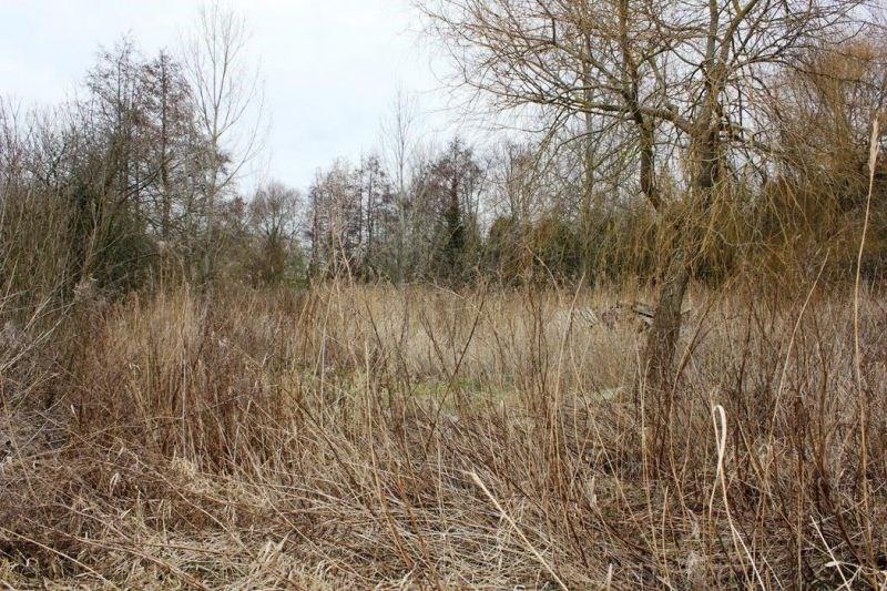 Verkoop  stukken grond Cucq 128400€ - Foto 1