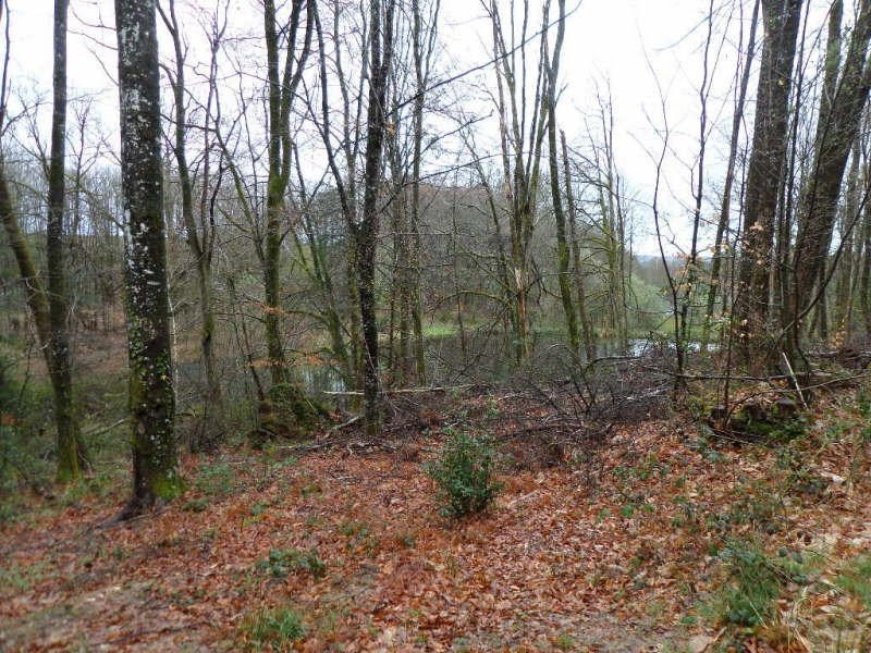 Vente terrain Champnetery 19 000€ - Photo 7