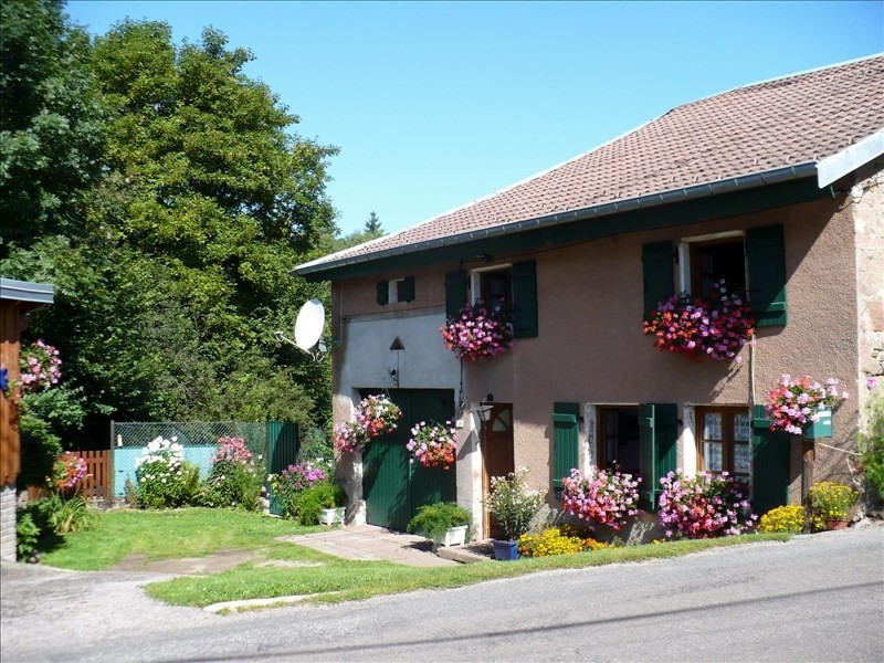Sale house / villa Saulxures 79000€ - Picture 1