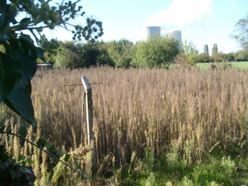 Vente terrain Neuvy sur loire 16000€ - Photo 2