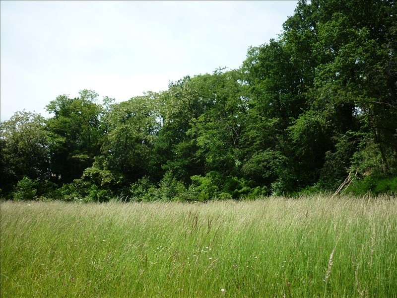 Vente terrain Mortagne au perche 56 000€ - Photo 2