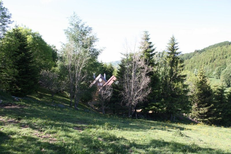Sale house / villa Freycenet la tour 35 000€ - Picture 3