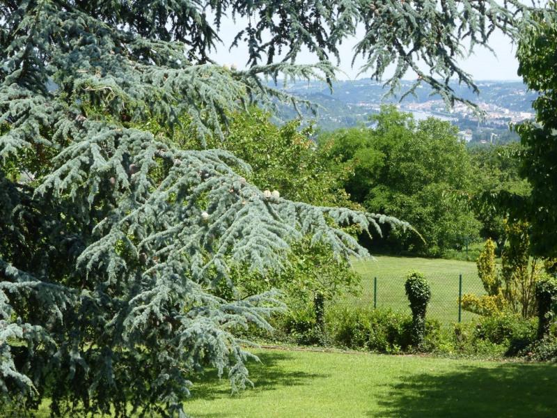 Vente maison / villa Vienne 460000€ - Photo 5
