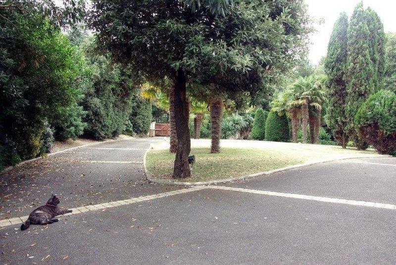 Vente de prestige maison / villa Talmont st hilaire 699000€ - Photo 5