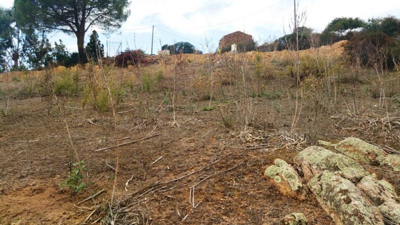 Vente terrain Pietrosella 170000€ - Photo 2