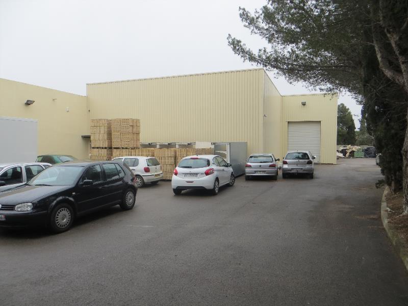 Vente Local d'activités / Entrepôt Saint-Jean-de-Védas 0