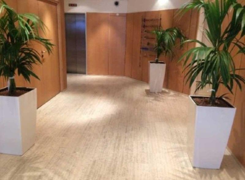 location bureau paris 8 me paris 75 1090 m r f rence. Black Bedroom Furniture Sets. Home Design Ideas