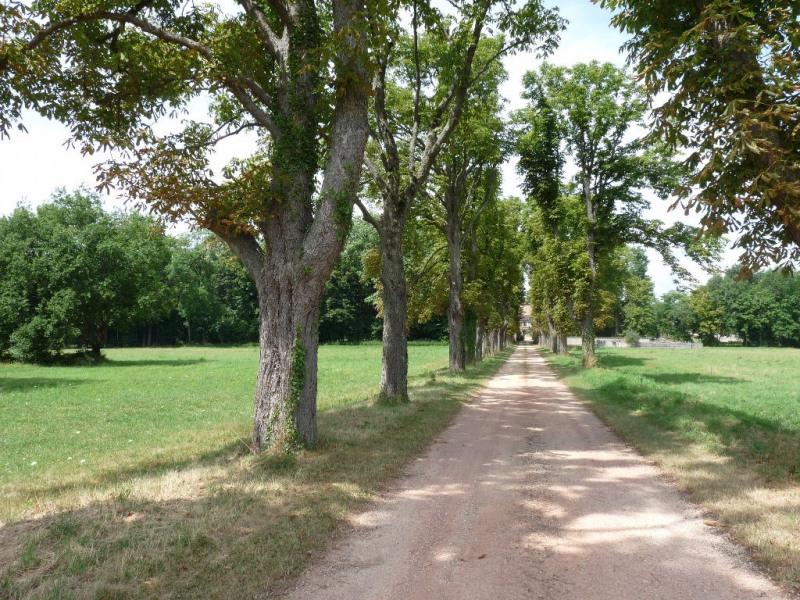 Vente de prestige château Chatillon sur chalaronne 2588000€ - Photo 5
