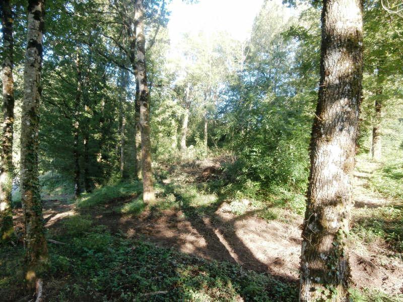 Vente terrain Environs de mazamet 34000€ - Photo 3