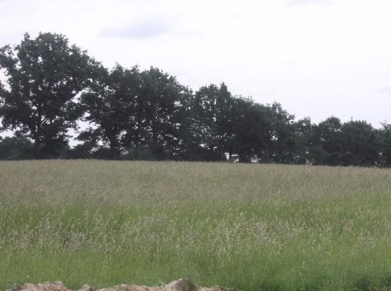 Vente terrain Aire sur l adour 19000€ - Photo 1