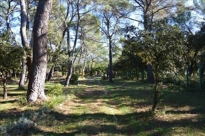 Verkoop  huis Mazan 430500€ - Foto 8