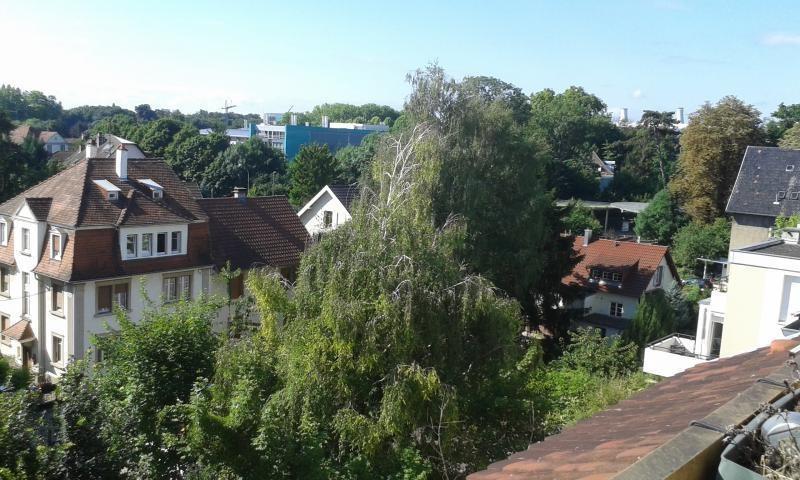 Location appartement Strasbourg 1080€ CC - Photo 1