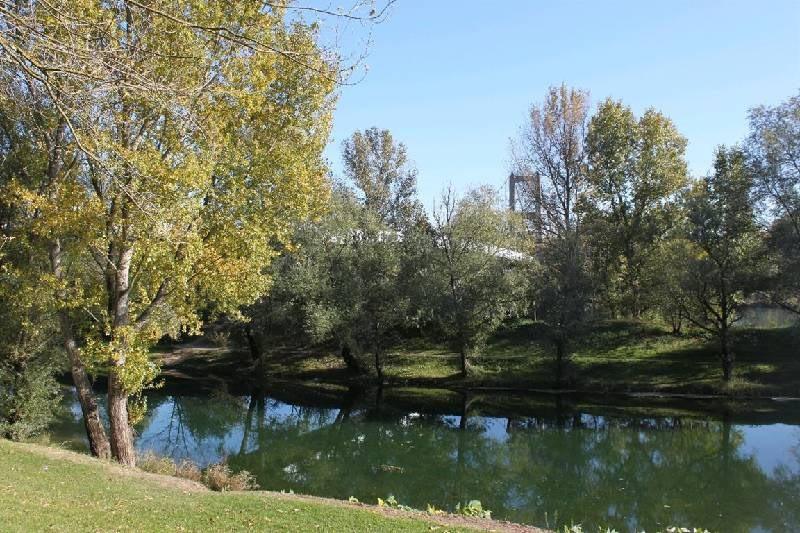 Vente terrain Vernaison 215000€ - Photo 1