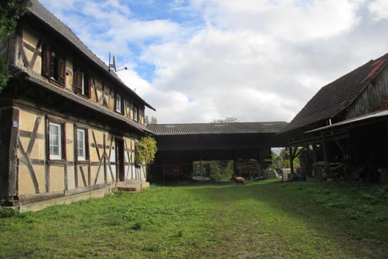 Terrain constructible Eberbach-Seltz