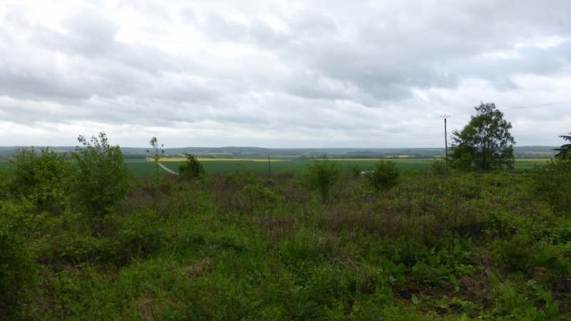 Vente terrain Beynes 125000€ - Photo 3