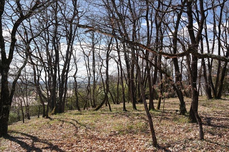 Vente terrain Castelnau d estretefonds 82000€ - Photo 1