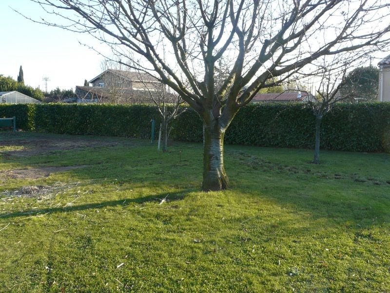 Vente terrain Bram 75 000€ - Photo 3