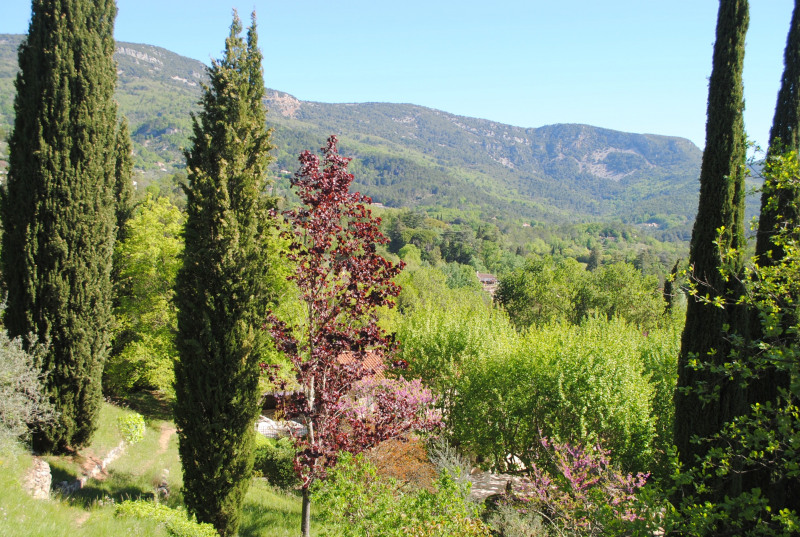 Vente de prestige maison / villa Bargemon 1 850 000€ - Photo 35
