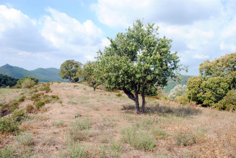 Vente terrain Bagnols-en-forêt 235000€ - Photo 17
