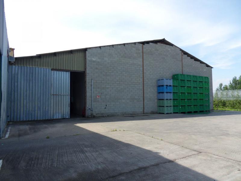 Vente local commercial Althen des paluds 1560000€ - Photo 9
