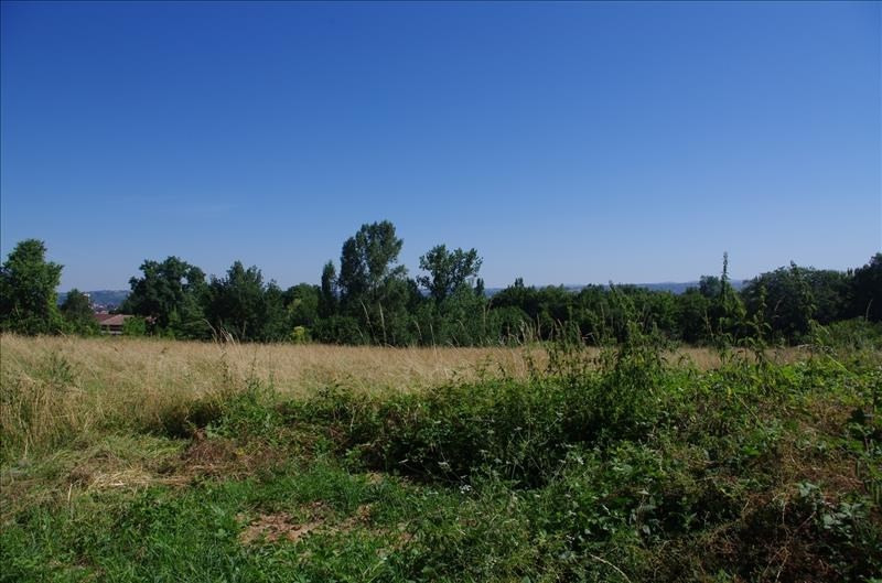 Vente terrain Albi 59 000€ - Photo 1