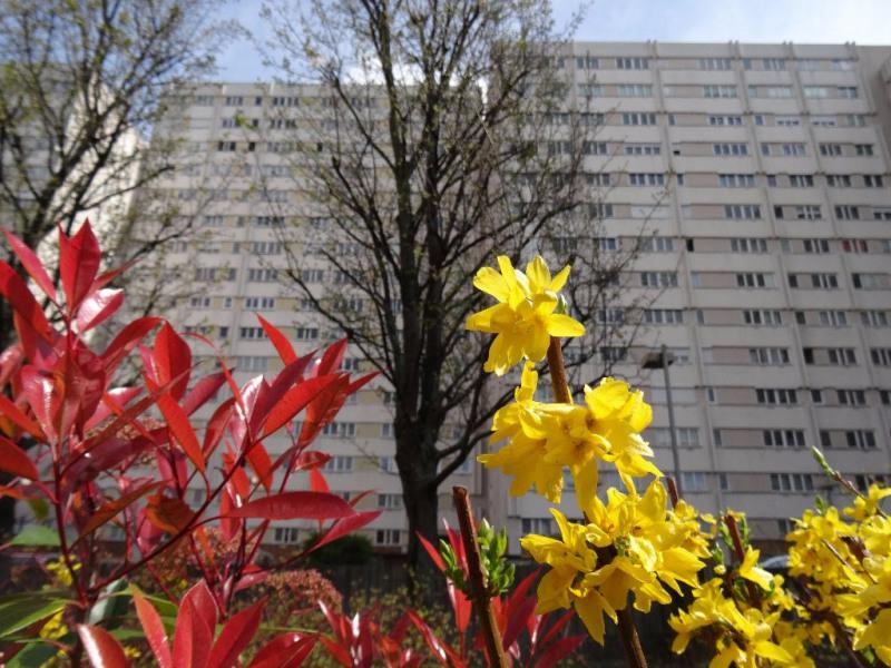 Vente appartement Clichy 210000€ - Photo 1