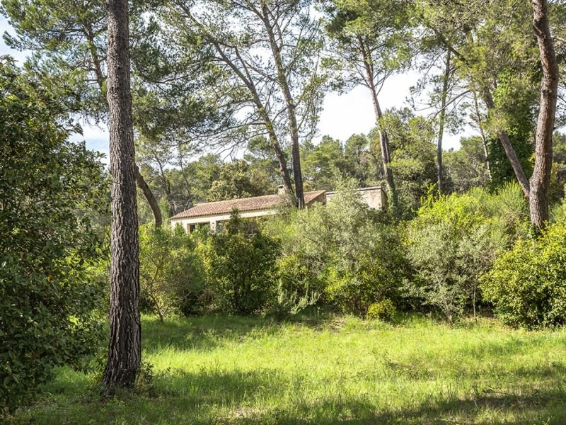 Sale house / villa Barbentane 525000€ - Picture 1