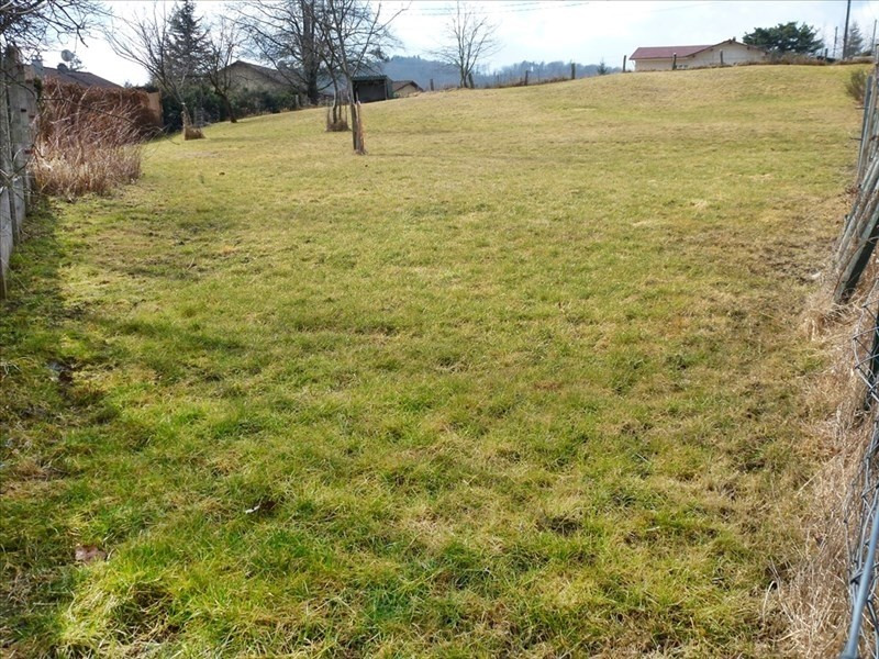 Vente terrain Raon l etape 25000€ - Photo 1