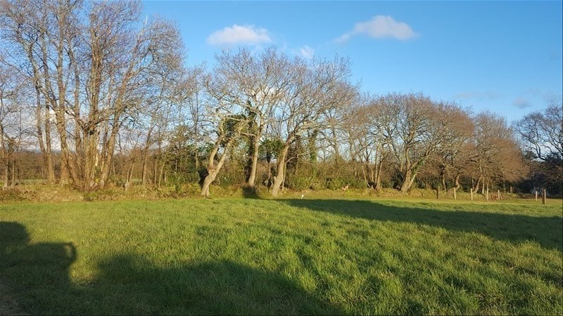 Vente terrain Fouesnant 102 600€ - Photo 1