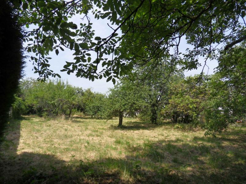 Vente terrain Montigny-sur-loing 137800€ - Photo 4
