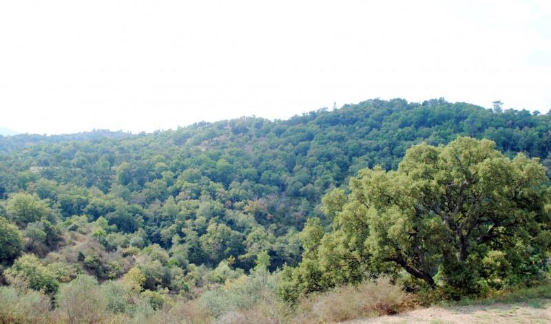Vente terrain Bagnols-en-forêt 235000€ - Photo 19