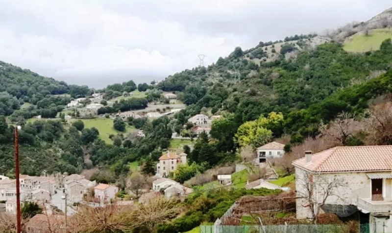 Sale house / villa Cuttoli-corticchiato 280000€ - Picture 1
