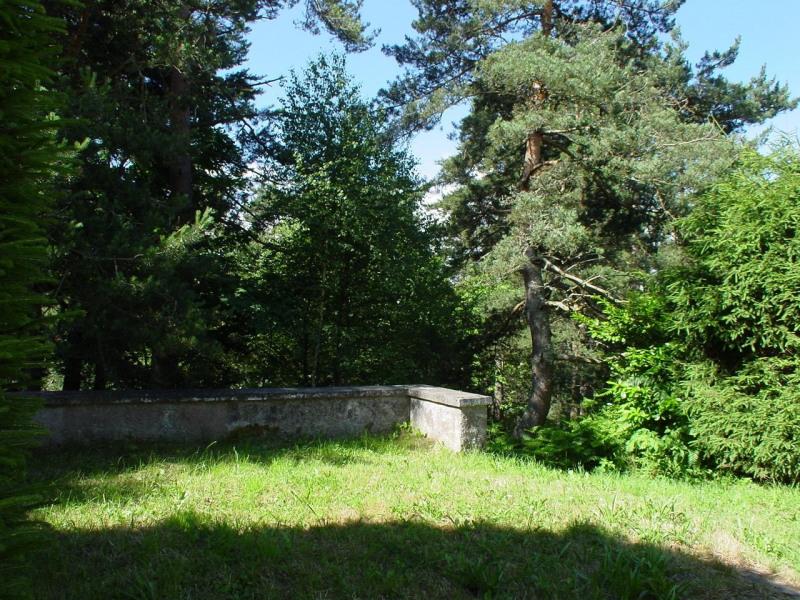Vente maison / villa Le chambon sur lignon 25000€ - Photo 3