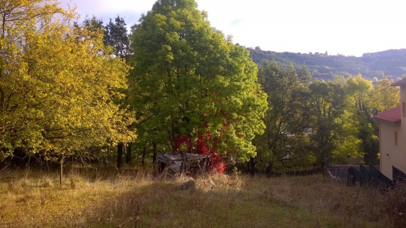Vente terrain Brives charensac 37800€ - Photo 3