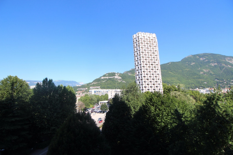 Sale apartment Grenoble 240 000€ - Picture 5