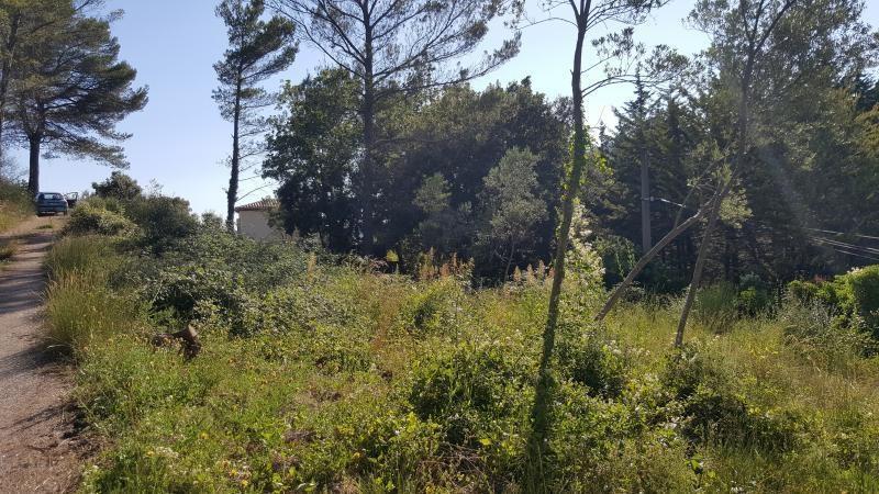 Vente terrain Callas 93000€ - Photo 2