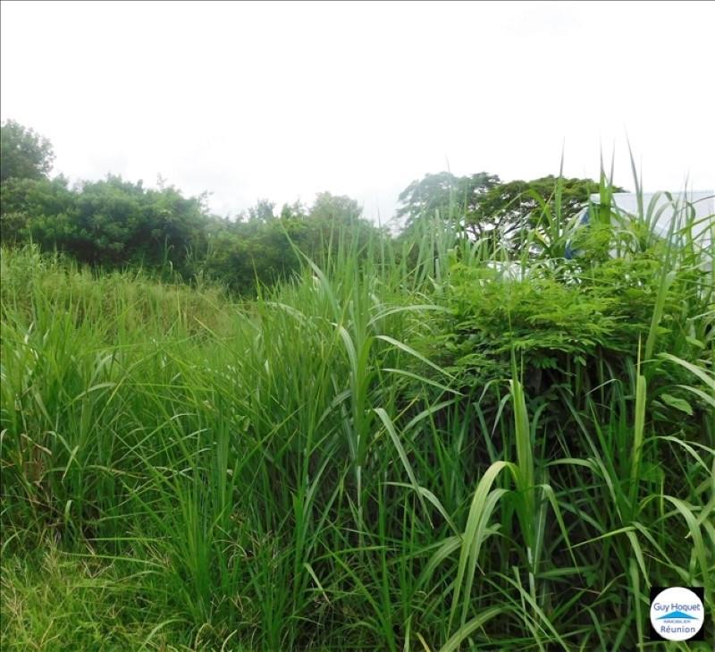Vente terrain Ste anne 132000€ - Photo 1